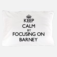 Keep Calm by focusing on on Barney Pillow Case