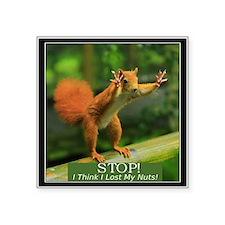 Squirrel Lost His Nuts Sticker