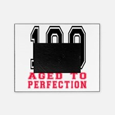 100 Aged To Perfection Birthday Desi Picture Frame