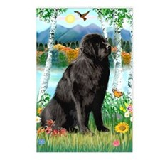 Newfie in the Birches Postcards (Package of 8)