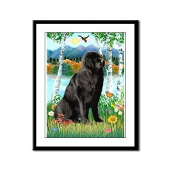 Newfie in the Birches Framed Panel Print