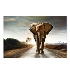 The Elephant Postcards (Package of 8)