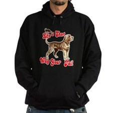 Funny T shorts Hoodie