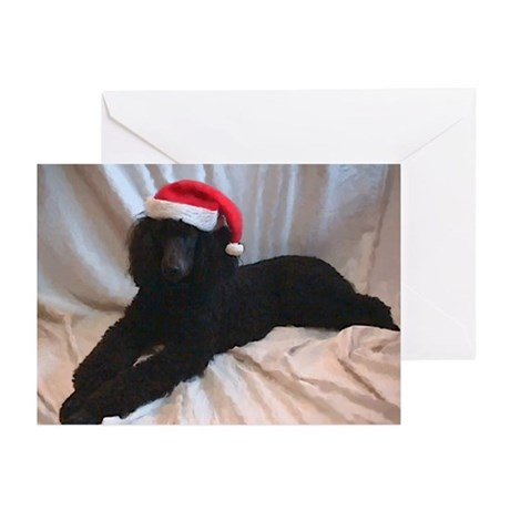 Standard Poodle Greeting Cards (Pk of 10)
