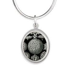 Ernst Haeckel Hexacoralla Cor Silver Oval Necklace