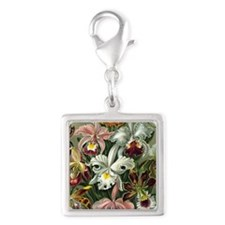 Ernst Haeckel Orchidae Orchid Silver Square Charm