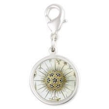Ernst Haeckel Phaeodaria Sea U Silver Round Charm