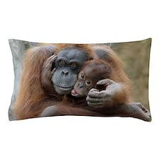OrangUtan001 Pillow Case