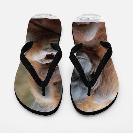OrangUtan001 Flip Flops