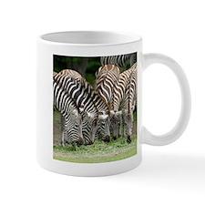 Zebra009 Mugs