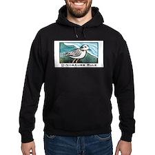 Birds Are Dinosaurs Hoodie