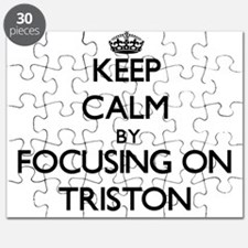 Keep Calm by focusing on on Triston Puzzle