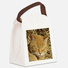Cute Cat designs Canvas Lunch Bag
