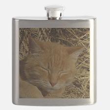 Cute Cat designs Flask