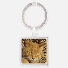 Cute Cat designs Square Keychain