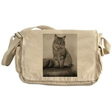 Beautiful Vintage Maine Coon Kitty Messenger Bag