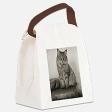 Beautiful Vintage Maine Coon Kitt Canvas Lunch Bag
