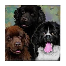 Newfoundland Dogs Tile Coaster