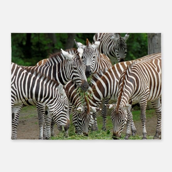Zebra_2014_1101 5'x7'Area Rug