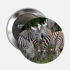 "Zebra_2014_1101 2.25"" Button"