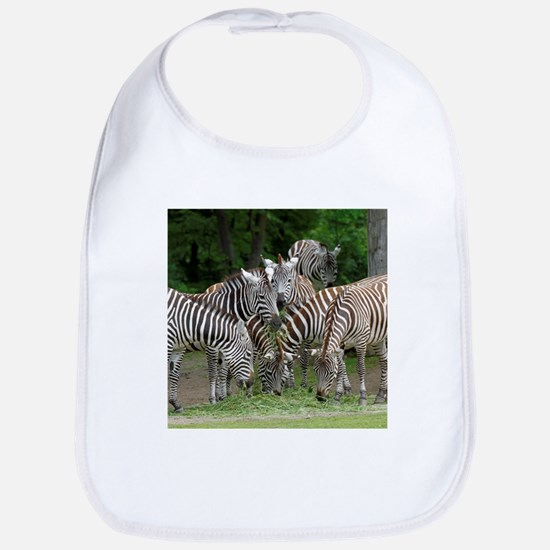 Zebra_2014_1101 Bib