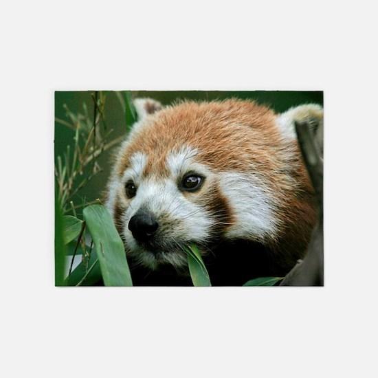 Red_Panda_2014_1101 5'x7'Area Rug