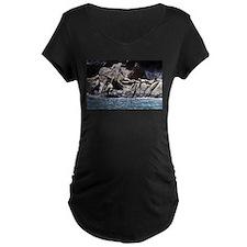 Sea Lion Party 1 T-Shirt