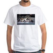 Sea Lion Party T-Shirt