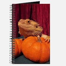 Autumn Beardie Journal
