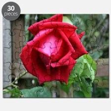 Red Rose Puzzle