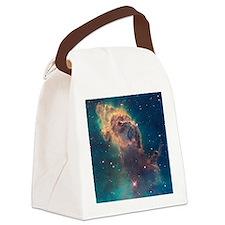Carina Nebula Canvas Lunch Bag