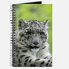 Leopard007 Journal