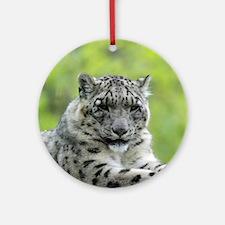 Leopard007 Ornament (Round)