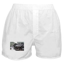 Steam engine locomotive: Colorado 3 Boxer Shorts