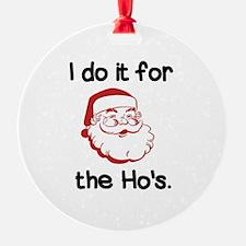 Santa's Secret Ornament