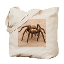 Tarantula Spider Tote Bag