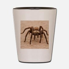 Tarantula Spider Shot Glass