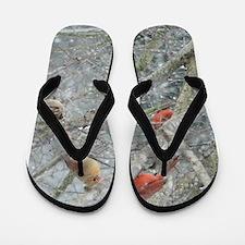 Cardinal Winter Flip Flops