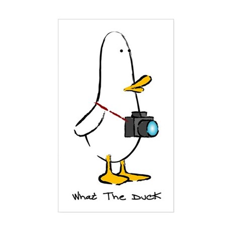 What the Duck: 1 of 4 Charact Sticker (Rectangular