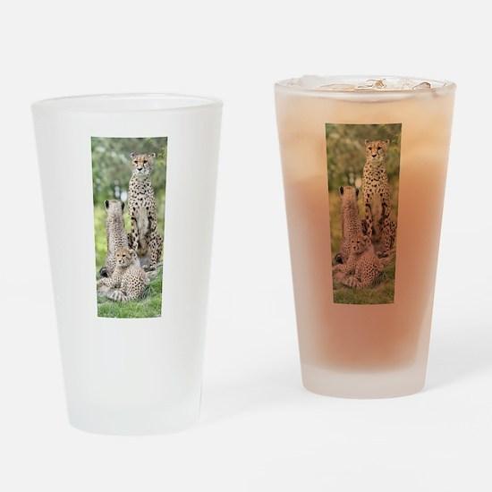 Cheetah002 Drinking Glass