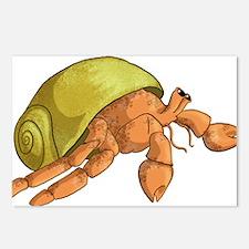 Hermit Crab Postcards (Package of 8)