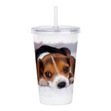Pocket Beagle painting Acrylic Double-wall Tumbler