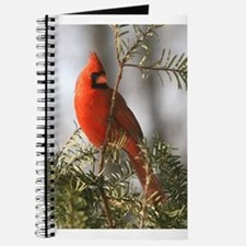 Winter Cardinal Journal