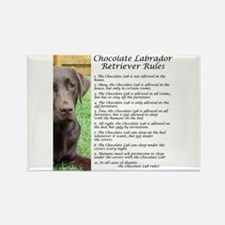 Cute Chocolate lab Rectangle Magnet