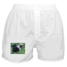 Pug Puppy Boxer Shorts