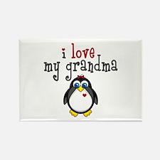Grandma Penguin Rectangle Magnet