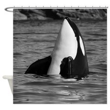 Cute Killer whale Shower Curtain