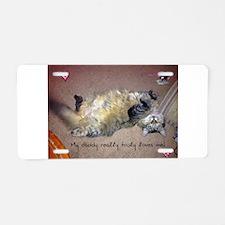 Very happy formerly stray kitty Aluminum License P