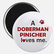 """A Doberman Loves Me 2.25"""" Magnet (100 pack)"""
