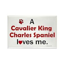 A Cavalier Loves Me Rectangle Magnet